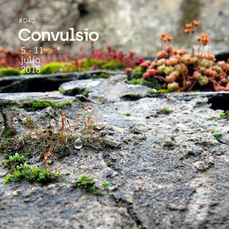 La Contra de Convulsio #040, por David Garmen