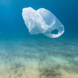 La Bolsa o la Vida, concienciación sobre el daño ambiental de los plásticos