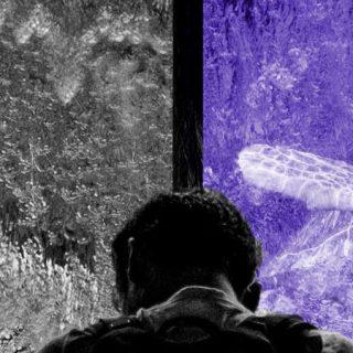 Detalle de la portada del libro Soledades, de Ignacio Amigó