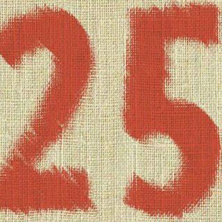 Detalle del cartel de la exposición 25 años de Arte Joven Langreo