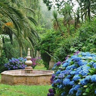 Foto de los jardes de Fonte Baixa en Luarca