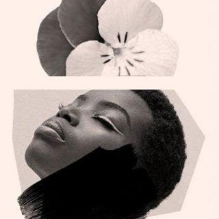 Imagen promocional de la exposición Papiers Collés