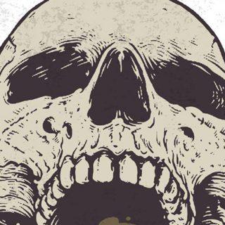 Detalle del cartel del North Skull Fest II