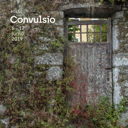 Contraportada con foto de una vieja puerta de una casa de pueblo a la que ya solo le queda la pared, una pared llena de vegetación con tonos rojos y verdes, a través de la puerta puede verse el edificio de atrás