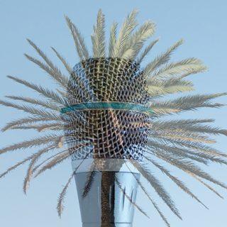 Imagen de un micrófono fundido sobre una palmera, como motivo veraniago