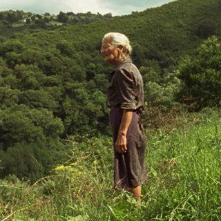 """Fotograma de la película """"Lo que arde"""" en el que se ve a su protagonista, una mujer de avanzada edad, en medio de un entorno natural, muy verde, mirando al infinito."""