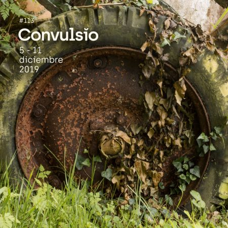 Foto de la rueda de un viejo carro agrícola, rodeada de vegetación.