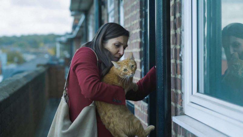 Fotograma de la pelíocula Cat in the wall en el que se ve a su protagonista junto a un gato